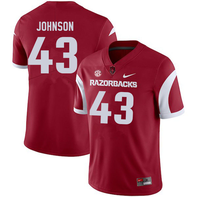 Men #43 Cedric Johnson Arkansas Razorbacks College Football Jerseys Sale-Cardinal